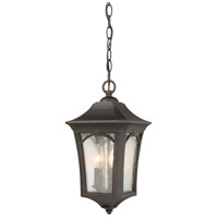 Solida 3 Light 9 inch Oil Rubbed Bronze with Gold Highlight Outdoor Pendant Lantern
