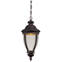 Wynterfield LED 9 inch Burnt Rust Outdoor Chain Hung Lantern