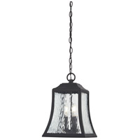 Cassidy Park 1 Light 10 inch Black Outdoor Chain Hung Lantern