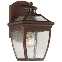 Sunnybrook 1 Light 11 inch Alder Bronze Outdoor Wall Lantern
