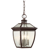 Sunnybrook 4 Light 9 inch Alder Bronze Outdoor Chain Hung Lantern
