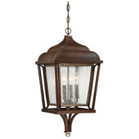 Astrapia 4 Light 11 inch Dark Rubbed Sienna/Aged Silver Outdoor Chain Hung Lantern