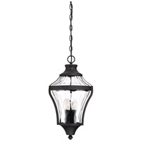 Libre 1 Light 11 inch Black Outdoor Pendant Lantern