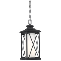Minka-Lavery 72684-66 Lansdale 1 Light 9 inch Coal Outdoor Chain Hung Light, Great Outdoors