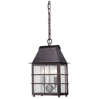 Willow Pointe 2 Light 9 inch Chelesa Bronze Outdoor Chain Hung Lantern