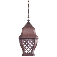 The Great Outdoors by Minka Arbor Hill 1 Light Hanging in Antique Bronze 8014-91-PL