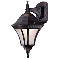 Segovia 1 Light 17 inch Heritage Outdoor Wall Mount