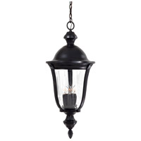 The Great Outdoors by Minka Morgan Park 5 Light Hanging in Heritage 8844-94