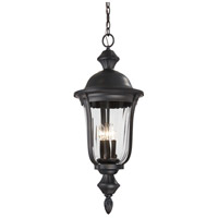 Minka-Lavery 8848-94 Morgan Park 3 Light 12 inch Heritage Outdoor Hanging Lantern The Great Outdoors