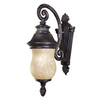 The Great Outdoors by Minka Newport 1 Light Outdoor Wall in Heritage 8907-94-PL