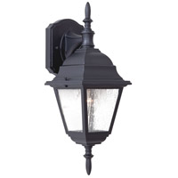 The Great Outdoors by Minka Bay Hill 1 Light Outdoor Wall in Black 9067-66