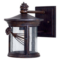 The Great Outdoors by Minka Abbey Lane 1 Light Wall Lamp in Iron Oxide 9151-A357