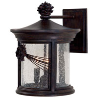 Abbey Lane 3 Light 14 inch Iron Oxide Outdoor Wall Lamp in Incandescent