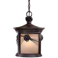 Abbey Lane 1 Light 11 inch Iron Oxide Outdoor Lighting in GU24