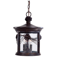 Abbey Lane 3 Light 11 inch Iron Oxide Outdoor Chain Hung Lantern