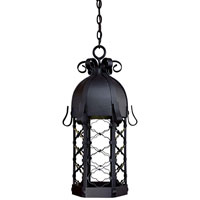 The Great Outdoors by Minka Montalbo 1 Light Hanging in Black 9244-1-66-PL