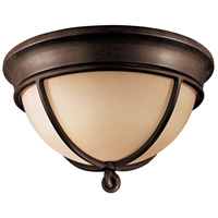Aspen 2 Light 12 inch Aspen Bronze Flush Mount Ceiling Light