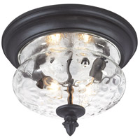The Great Outdoors by Minka Ardmore 2 Light Flushmount 9909-1-66