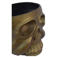 Moe's Home Collection FI-1068-51 Skull Anitque Brass Planter
