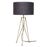 Moes Home Collection OD-1003-43 Nightingale 29 inch 60 watt Brass Table Lamp Portable Light