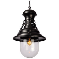 Moes Home Collection WK-1006-02 Brandt 1 Light 15 inch Black Pendant Ceiling Light