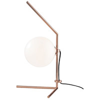Tori 20 inch 4 watt Polished Copper Table Lamp Portable Light