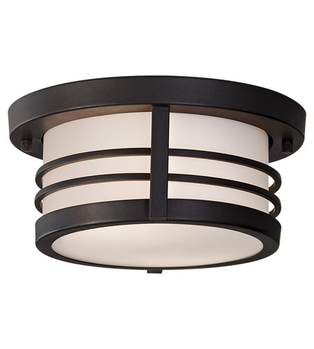 Feiss Carbondale 2 Light Outdoor Flush Mount in Dark Chocolate OL8313DRC photo