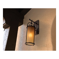 Feiss OL7604HTBZ Dakota 1 Light 17 inch Heritage Bronze Outdoor Wall Sconce in Aged Oak Glass alternative photo thumbnail
