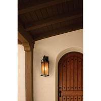 Feiss Dakota 1 Light Outdoor Wall Sconce in Heritage Bronze OL7604HTBZ alternative photo thumbnail