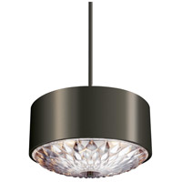 Botanic 4 Light 20 inch Aged Pewter Pendant Ceiling Light in Standard