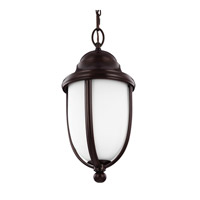 Vintner Outdoor 1 Light 8 inch Heritage Bronze Outdoor Hanging Lantern in Fluorescent
