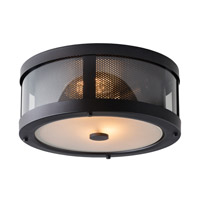 Bluffton 2 Light 13 inch Oil Rubbed Bronze Outdoor Flush Mount in Fluorescent