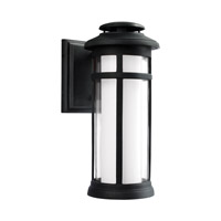 Oakfield LED 17 inch Dark Weathered Zinc Outdoor Wall Lantern
