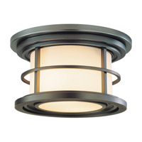 Lighthouse LED 10 inch Burnished Bronze Outdoor Flush Mount in Integrated LED