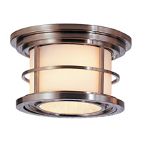 Lighthouse 2 Light 10 inch Brushed Steel Outdoor Flush Mount in Standard