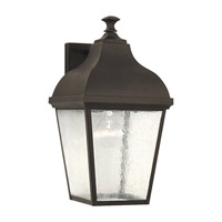 Terrace 1 Light 16 inch Oil Rubbed Bronze Outdoor Wall Lantern in Fluorescent