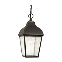 Terrace 1 Light 8 inch Oil Rubbed Bronze Outdoor Hanging Lantern in Standard