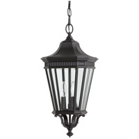 Cotswold Lane 3 Light 10 inch Black Outdoor Hanging Lantern in Standard