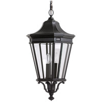 Cotswold Lane 3 Light 12 inch Black Outdoor Hanging Lantern in Standard