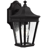 Cotswold Lane 1 Light 12 inch Black Outdoor Wall Lantern