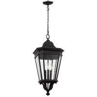 Cotswold Lane 3 Light 12 inch Black Outdoor Hanging Lantern