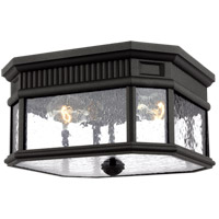 Cotswold Lane 2 Light 12 inch Black Outdoor Flush Mount