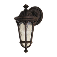 Regent Court 1 Light 14 inch Walnut Outdoor Wall Sconce in Standard, Blown Clear Water Glass