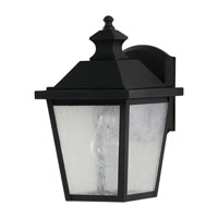 Woodside Hills 1 Light 11 inch Black Outdoor Wall Lantern in Fluorescent