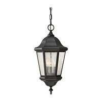 Martinsville 3 Light 10 inch Black Outdoor Hanging Lantern