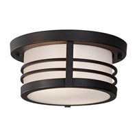 Feiss Carbondale 2 Light Outdoor Flush Mount in Dark Chocolate OL8313DRC