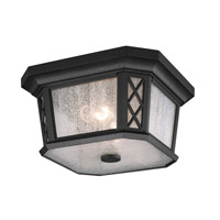 Wembley Park 2 Light 12 inch Textured Black Outdoor Lantern Flushmount in Standard