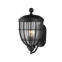 River North 1 Light 17 inch Textured Black Outdoor Wall Lantern in Fluorescent