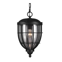 River North 1 Light 9 inch Textured Black Outdoor Lantern Hanging in Standard