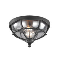 River North 2 Light 13 inch Textured Black Outdoor Lantern Flushmount in Standard